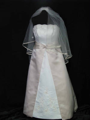 David's Bridal Gown #41 Gown Front with Viel